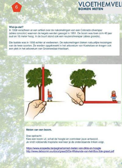 06 bomen meten
